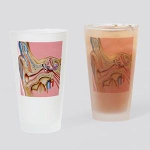 Cochlear implant, artwork Drinking Glass