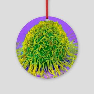 Cervical cancer cell, SEM Round Ornament