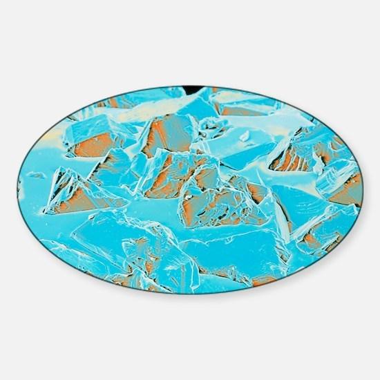 Coloured SEM of a diamond-coated de Sticker (Oval)
