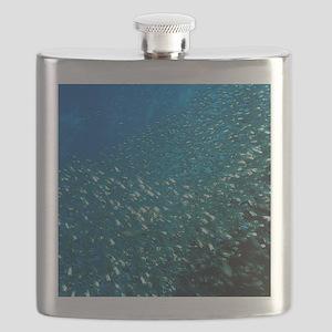 Sweeper fish Flask
