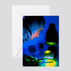 Technician inspecting silicon wafers Greeting Card