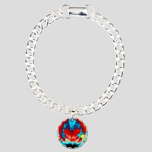 Coloured X-ray of an art Charm Bracelet, One Charm