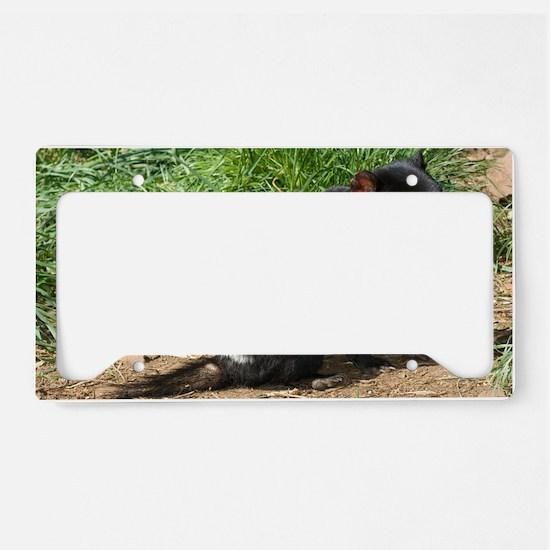 Tasmanian devil License Plate Holder