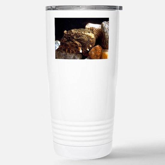 Toadfish Stainless Steel Travel Mug