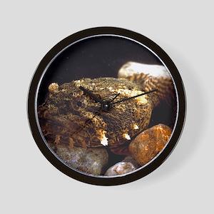 Toadfish Wall Clock