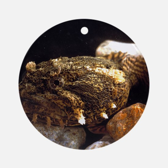 Toadfish Round Ornament