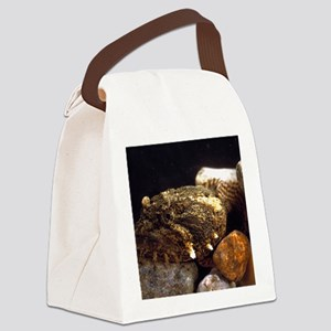 Toadfish Canvas Lunch Bag