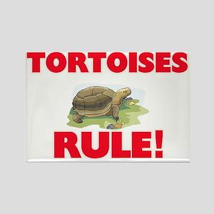 Tortoises Rule! Magnets