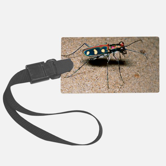 Tiger beetle Luggage Tag