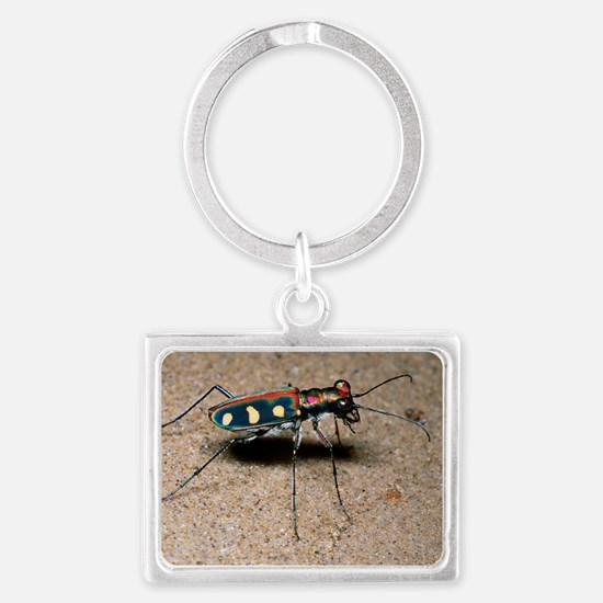 Tiger beetle Landscape Keychain