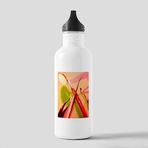 Dentistry equipment Stainless Water Bottle 1.0L