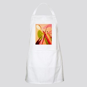 Dentistry equipment Apron
