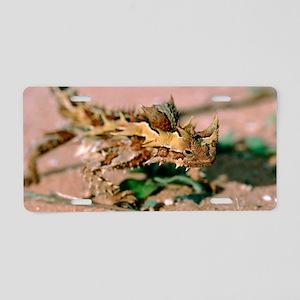 Thorny devil lizard Aluminum License Plate