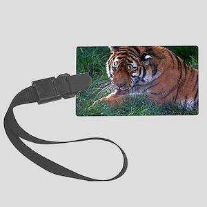 Tiger grooming Large Luggage Tag