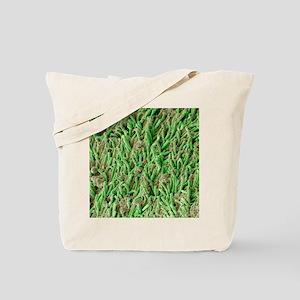Dental plaque, SEM Tote Bag