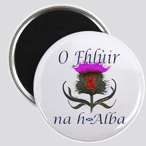 Flower of Scotland Gaelic Thistle Design Magnet