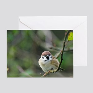 Tree sparrow Greeting Card