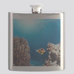 Twoband anemonefish Flask