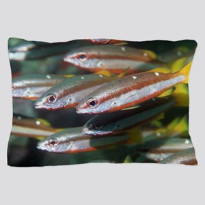 Two-spot banded snappers Pillow Case
