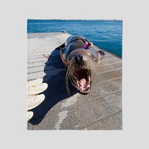 US Navy California sea lion Throw Blanket
