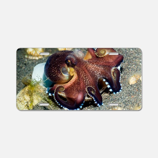 Veined octopus feeding Aluminum License Plate