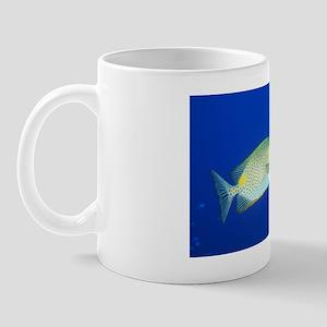 z6050949 Mug