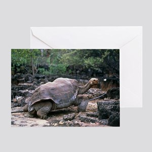 z7550005 Greeting Card