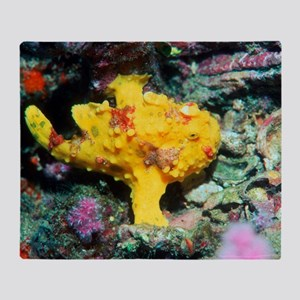 Warty frogfish Throw Blanket