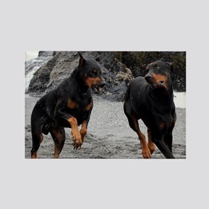 Dobermans on the beach Rectangle Magnet