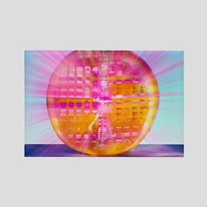 Genetically modified orange Rectangle Magnet