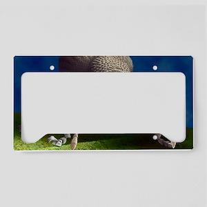 Vine weevil, SEM License Plate Holder