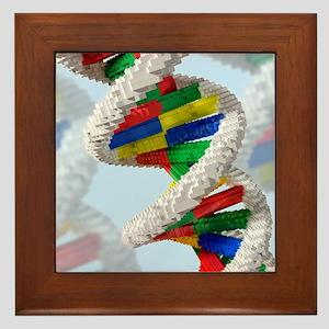 Genetic engineering, conceptual artwor Framed Tile