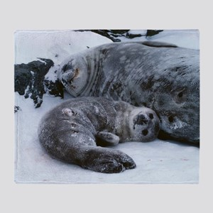 Weddell seal mother with pup Throw Blanket