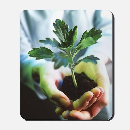Genetically modified plant Mousepad