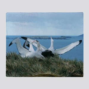 Wandering albatrosses Throw Blanket