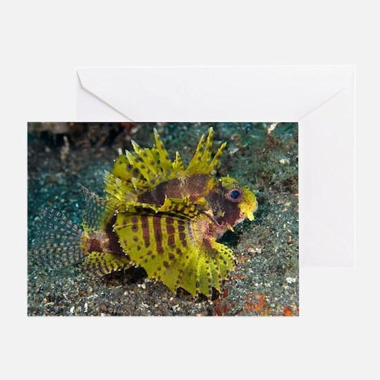 Weedy scorpionfish Greeting Card