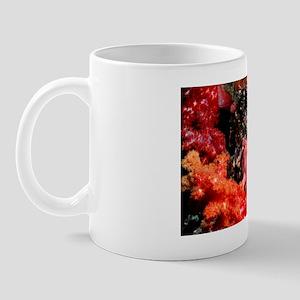 Warty frogfish Mug
