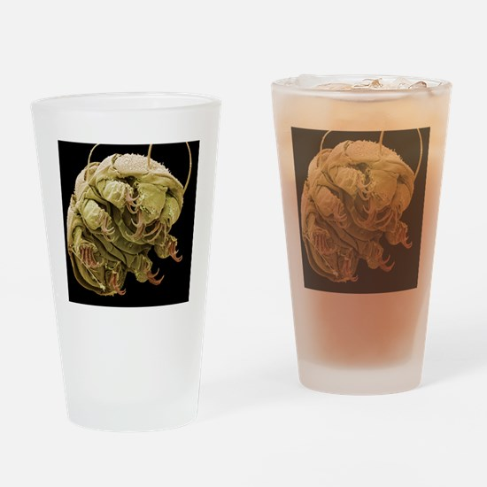 Water bear, SEM Drinking Glass
