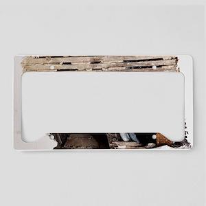 Water damaged ceiling License Plate Holder