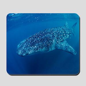 Whale shark Mousepad