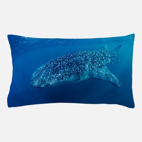 Whale shark Pillow Case