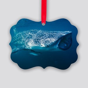 Whale shark and pilot fish Picture Ornament
