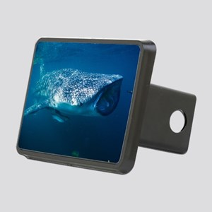 Whale shark and pilot fish Rectangular Hitch Cover