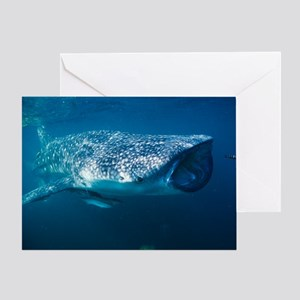 Whale shark and pilot fish Greeting Card