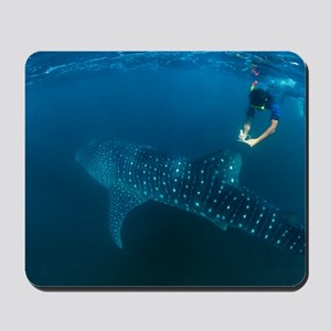 Whale shark and snorkeler Mousepad