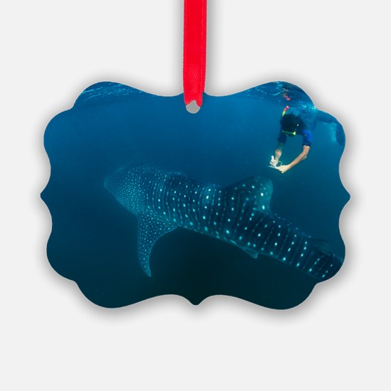 Whale shark and snorkeler Ornament