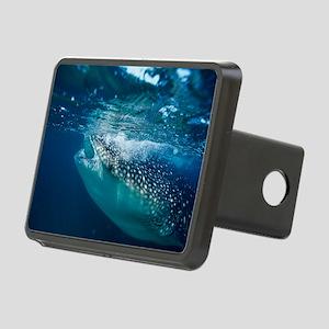 Whale shark filter feeding Rectangular Hitch Cover