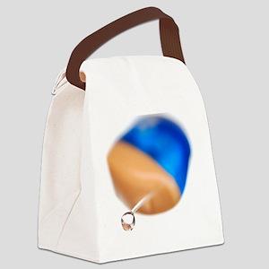 Hearing aid Canvas Lunch Bag