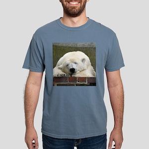 Polar bear 003 T-Shirt