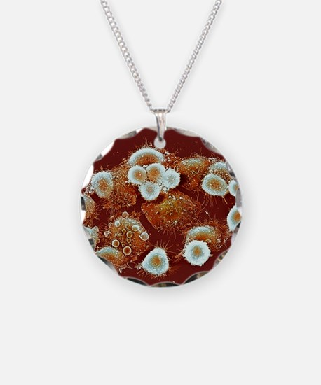 HeLa cells, SEM Necklace Circle Charm